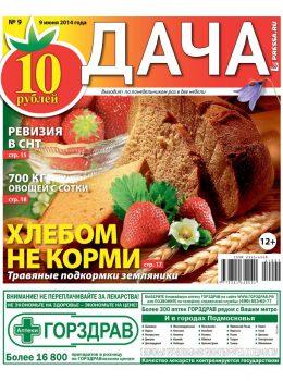 №9. Хлебом не корми