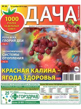 №20. Красная калина — ягода здоровья