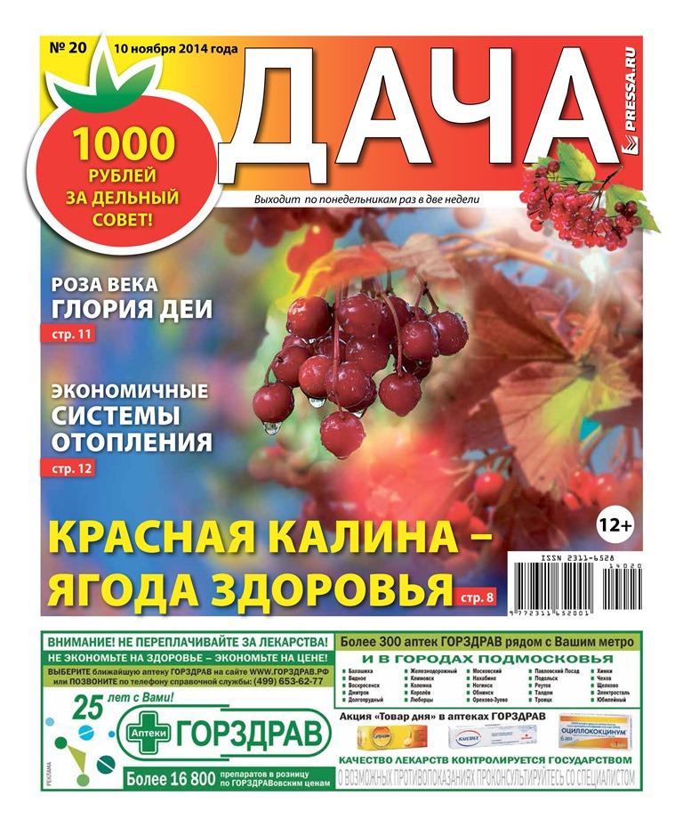 №20. Красная калина - ягода здоровья