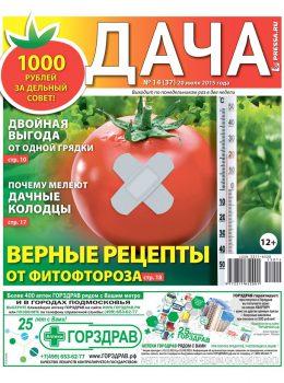 №14(37). Верные рецепты от фитофтороза