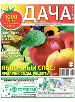 №16(39). Яблочный спас: ярмарки, сады, рецепты