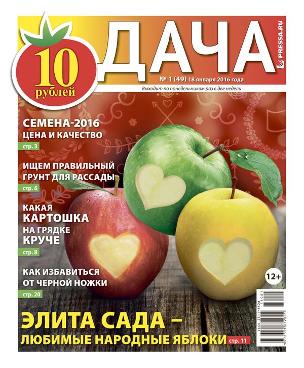 №1 (49) Элита сада - любимые народные яблоки
