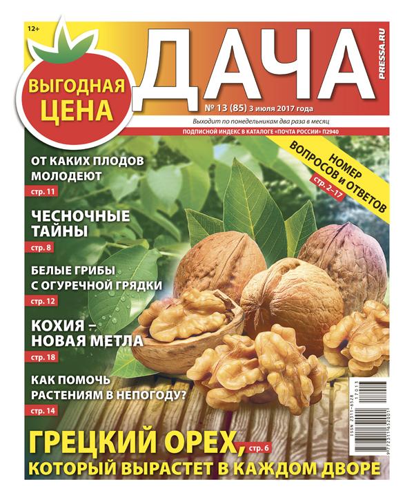 №13 (85) Грецкий орех