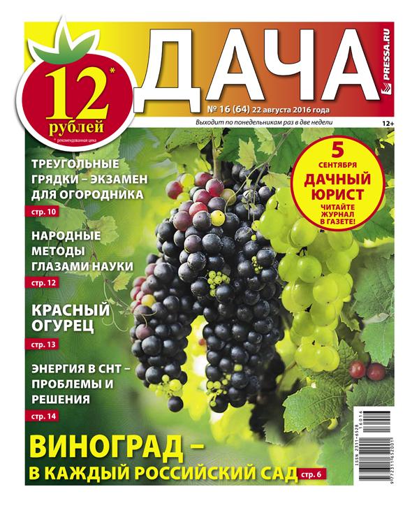 №16 (64) Виноград - в каждый российский сад