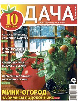 №2 (50) Мини-огород на зимнем подоконнике