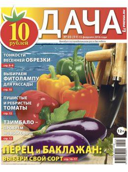 №3 (51) Перец и баклажан: выбери свой сорт