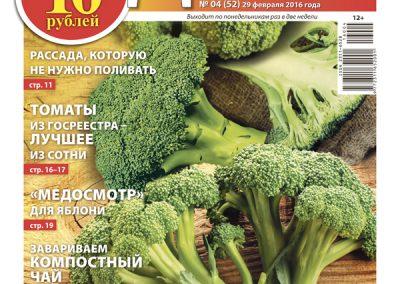 №4 (52) «Итальянка в России». Как легко вырастить брокколи