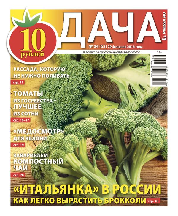 """№4 (52) """"Итальянка в России"""". Как легко вырастить брокколи"""
