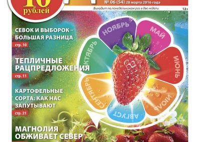 №6 (54) Земляника все лето