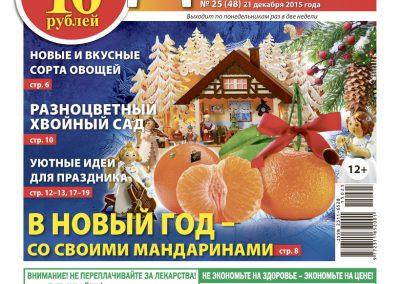 №25(48) В новый год со своими мандаринами