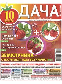 №11 (59) Земклуника — отборные ягоды без хлопот