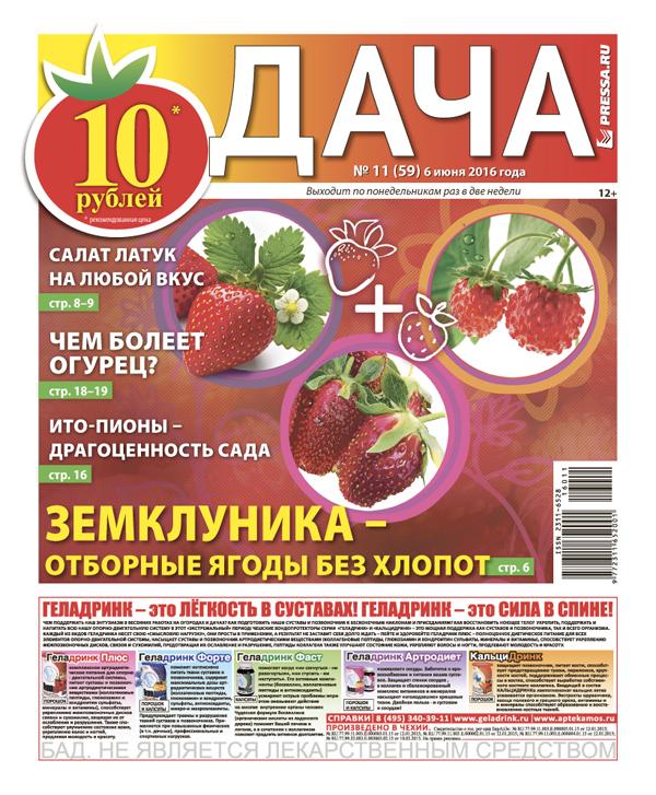 №11 (59) Земклуника - отборные ягоды без хлопот