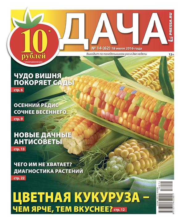 №14 (62) Цветная кукуруза