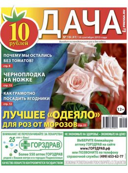 №18(41). Лучшее «одеяло» для роз от морозов
