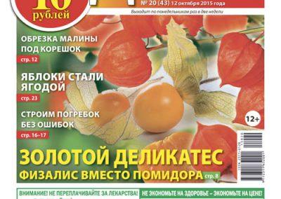 №20(43). Золотой деликатес. Физалис вместо помидора