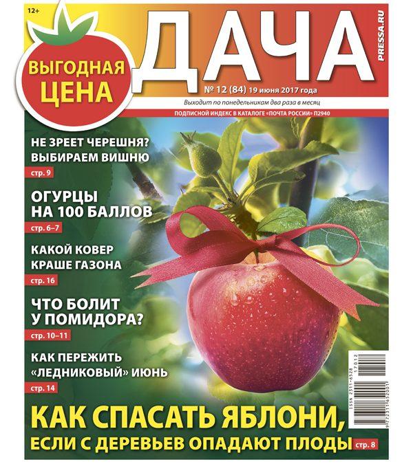 №12 (84) Как спасать яблони