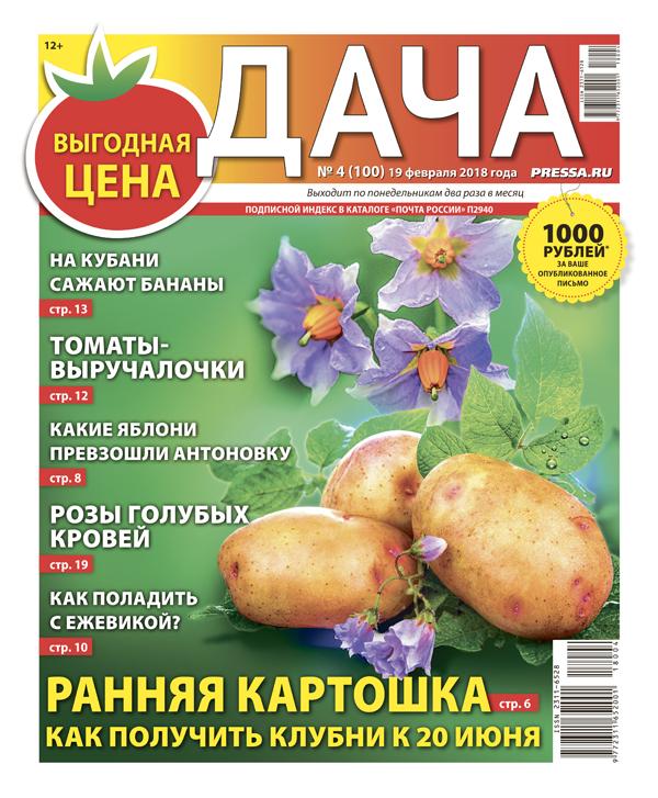 №4 (100) Ранняя картошка