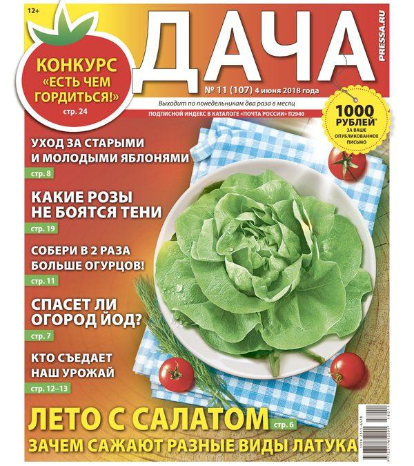 №11 (107) Лето с салатом
