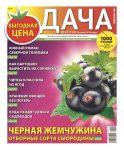 №14 (110) Черная жемчужина