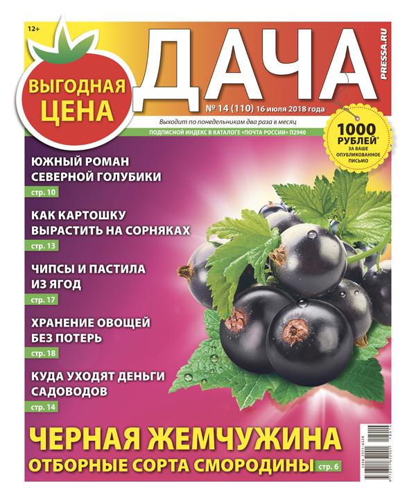 №14 (110) Черная жемчужина: отборные сорта смородины