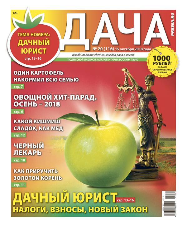 №20 (116) Дачный юрист