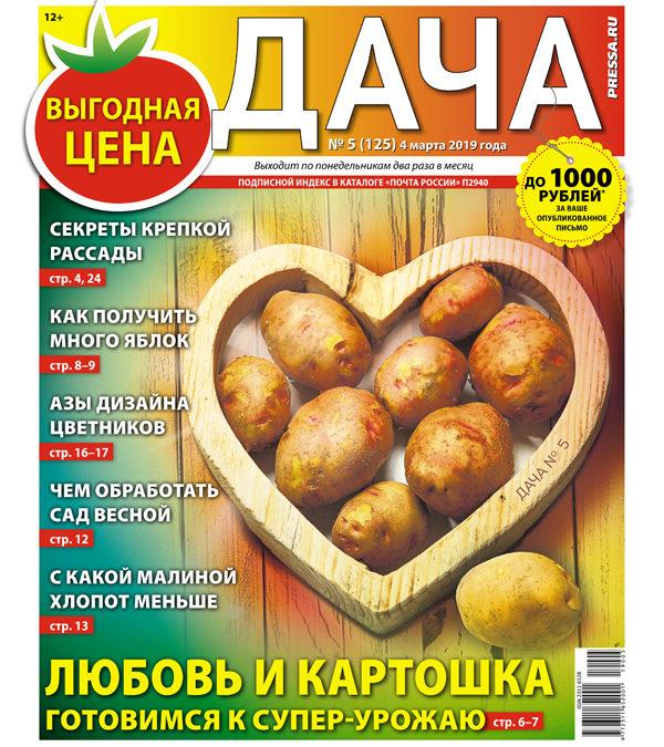 №05 (125) Любовь и картошка