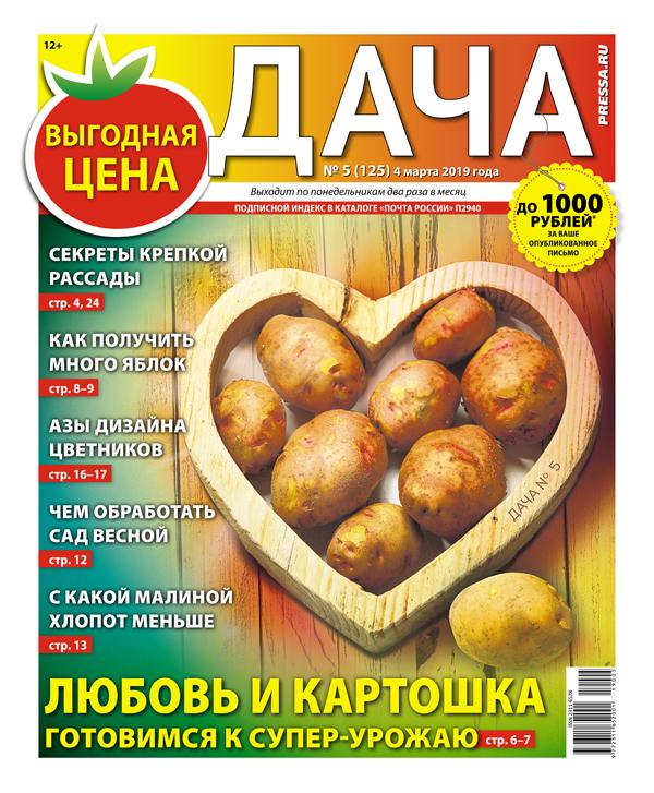 № 05 (125) Любовь и картошка