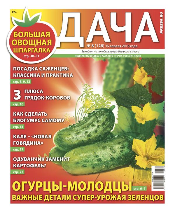 № 08 (128) Огурцы-молодцы