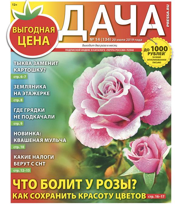 №14 (134) Что болит у розы?