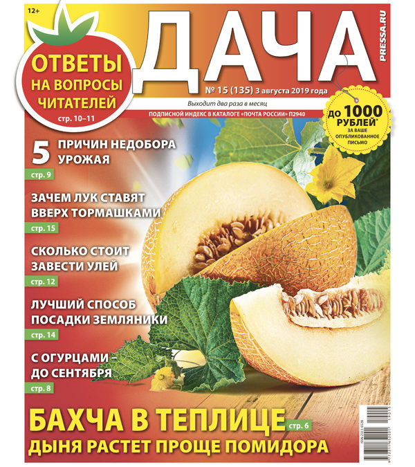 №15 (135) Бахча в теплице