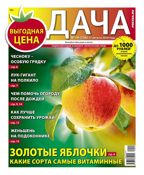 № 16 (136) Золотые яблочки