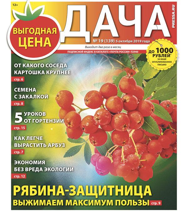 №19 (139) Рябина-защитница