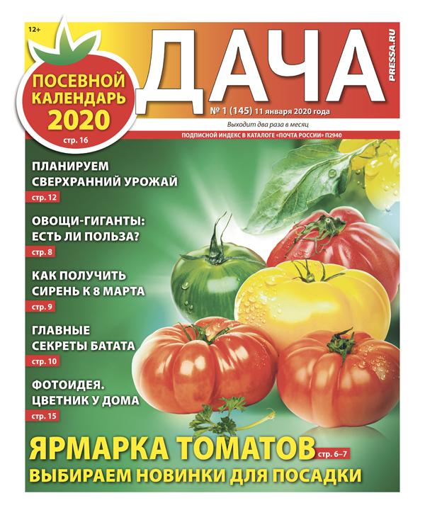 № 01 (145) Ярмарка томатов