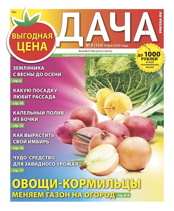 №09 (153) Овощи-кормильцы