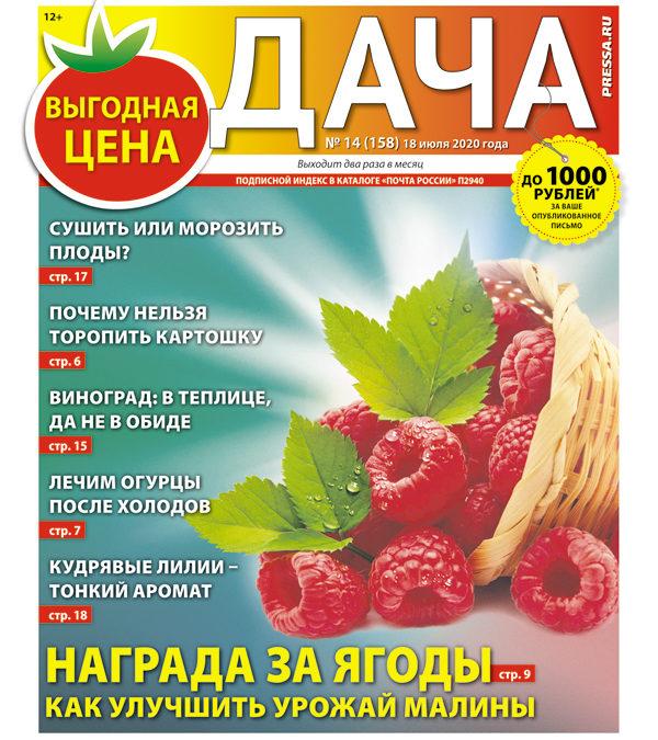 №14 (158) Награда за ягоды