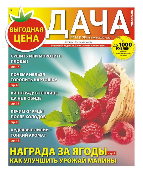 № 14 (158) Награда за ягоды