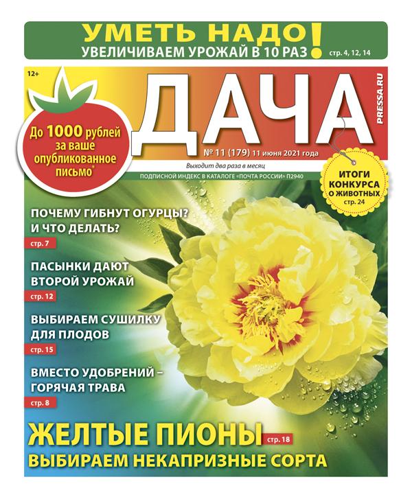 № 11 (179) Желтые пионы